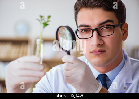 Biotechnology scientist working in the lab - Stock Photo