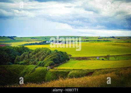 Scottish landscape, United Kingdom - Stock Photo