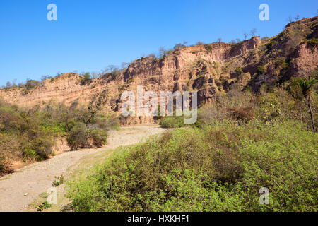 orange sandy rock faces and acacia woodland in the nature reserve of morni hills chandigarh india under a blue sky - Stock Photo