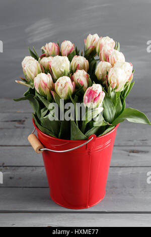 close up of ice cream flowers on plate stock photo royalty free image 47543665 alamy. Black Bedroom Furniture Sets. Home Design Ideas