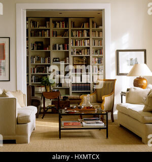 Living room with bookcase. - Stock Photo