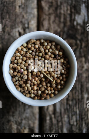 Coriander seeds in a white bowl on a wooden table - Stock Photo