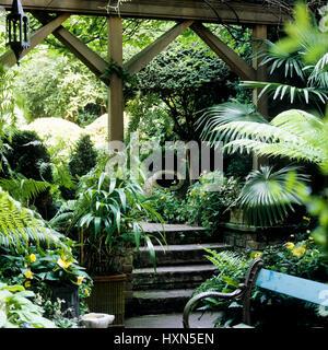 Staircase in garden.