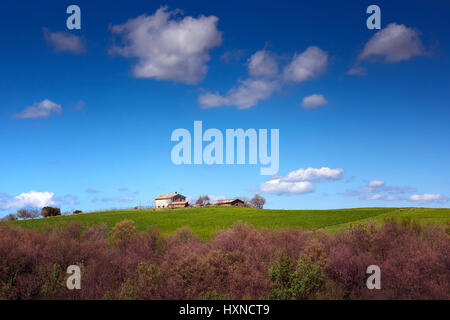 farm house on the prairie, country house on the hill and background of blue sky and clouds. - Stock Photo