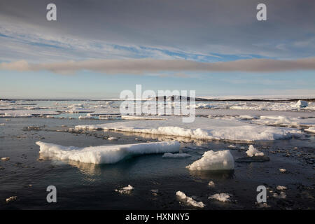 Pack ice in the polar sea , Packeis im Polarmeer   Spitzbergen Norwegen - Stock Photo