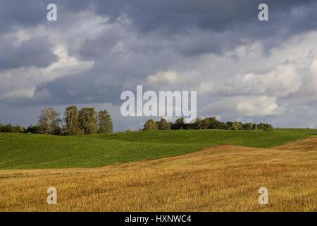 Harvested field and meadow in Masuria Poland, Abgeerntetes Feld und Wiese in den Masuren Polen - Stock Photo