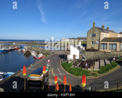 Seahouses Harbour and village view, Northumberland, UK - Stock Photo