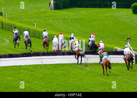 jumping the steeplechase during a horse race - Stock Photo