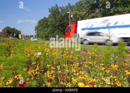 Bl?hstreifen in street, Blühstreifen an Straße - Stock Photo