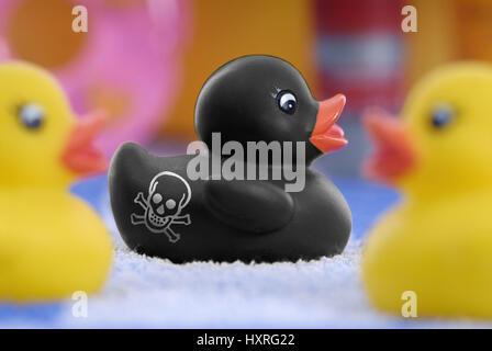 Black elastic duck with death's-head sign, PAK in elastic products, Schwarze Gummiente mit Totenkopf-Zeichen, PAK - Stock Photo