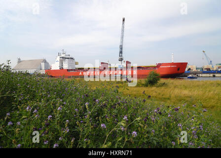 'Freighter ''Arcitic of express train'' in the Hamburg harbour, Hamburg, Germany, Europe', Frachtschiff 'Arcitic - Stock Photo