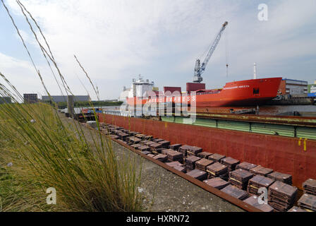 'Freighter ''Arctic of express train'' in the Hamburg harbour, Hamburg, Germany, Europe', Frachtschiff 'Arctic Express' - Stock Photo