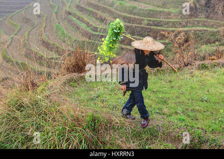 Yao Village Dazhai, Longsheng, Guangxi Province, China - April 3, 2010: Farmland in the countryside of southwestern - Stock Photo