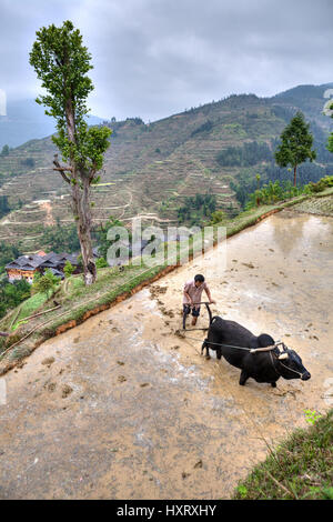 Zhaoxing Dong Village, Guizhou Province, China -  April 9, 2010: Farmer in countryside asia, Are plowing soil for - Stock Photo