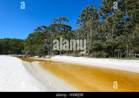 Tannin-stained creek flowing into the sea at Green Patch Beach, Booderee National Park, Jervis Bay,  New South Wales, - Stock Photo