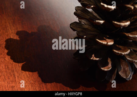 a pine cone on a wooden background - Stock Photo