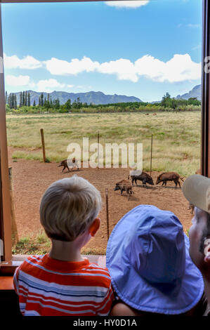 Train ride in Kauai: A father and kids look out the window of the Kauai Plantation Railway at Kilohana, passing - Stock Photo