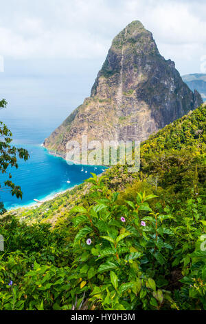 Petit Piton, one of the two (with Gros Piton) volcanic plugs on the west coast of the island of Saint Lucia in the - Stock Photo