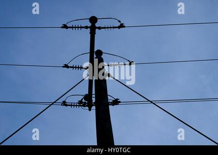 Power lines silhouetted against the evening sky near Vernon, Alabama. - Stock Photo