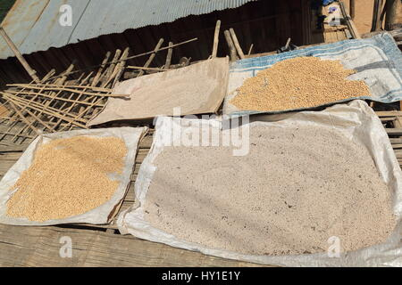 Plastic mats over a bamboo strip platform containing legumes-soybeans and grains-rice sun drying in a village of - Stock Photo