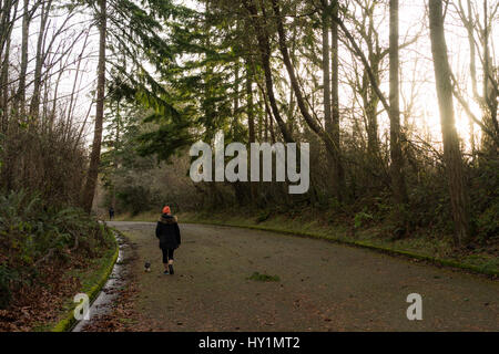 A girl walks a small dog (Scientific name: Canis lupus familiaris) in Discovery Park while the sun peeks through - Stock Photo