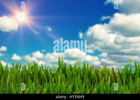 Grass growing outdoors against scenic view of blue sky - Stock Photo
