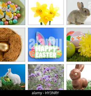 Happy Easter greeting against colorful chocolate easter eggs with cup cakes in bowl - Stock Photo