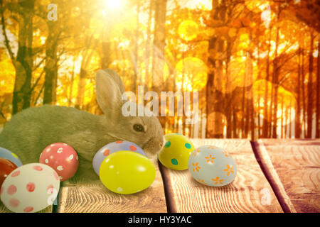 Brown bunny with colorful Easter egg against autumn scene - Stock Photo