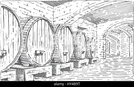 wine barrels in cellar vintage old looking vector illustration engraved, hand drawn scratchboard style for bottle - Stock Photo