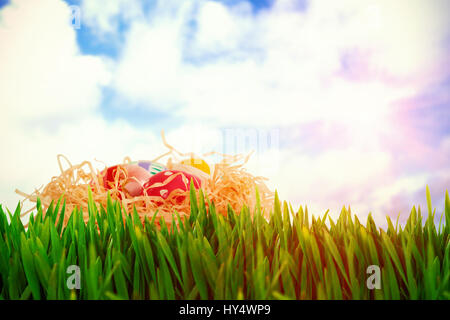 Grass growing outdoors against blue sky with white clouds - Stock Photo