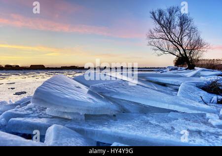 Elbufer in winter in Kirchwerder, 4 and marshy land, Hamburg, Germany, Europe, Elbufer im Winter in Kirchwerder, - Stock Photo