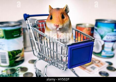 Hamster's figure in the shopping cart, symbolic photo hamster's purchases, Hamsterfigur im Einkaufswagen, Symbolfoto Hamsterkaeufe