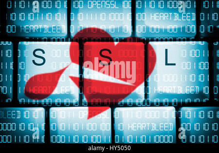 Computer keys with SSL stroke and binary code, security gap Heartbleed in OpenSSL, Computertasten mit SSL-Schriftzug - Stock Photo
