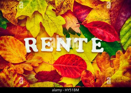 Stroke pension on autumn sheets, Schriftzug Rente auf Herbstblaettern - Stock Photo