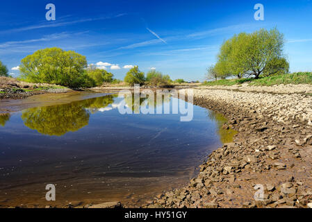 The Elbe and nature reserve Zollenspieker in the 4 and march landing, Hamburg, Germany, Europe, Elbe und Naturschutzgebiet - Stock Photo