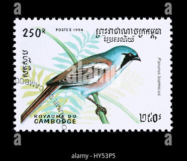 Postage stamp from Cambodia depicting a bearded reedling (Panurus biarmicus) - Stock Photo