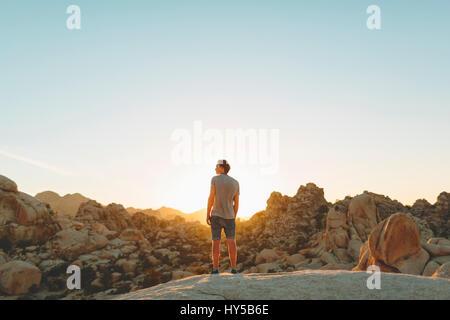 USA, California, Man looking at view in Joshua Tree National Park - Stock Photo