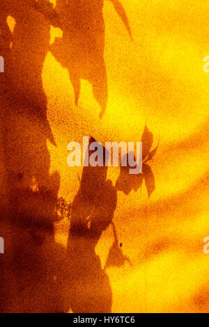 Abstract design produced by leaf shadows on orange canvas - Stock Photo