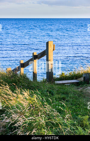 Wooden steps down to the beach from the Southwest Coast Path at Ringstead Bay, Dorset, England, UK - Stock Photo