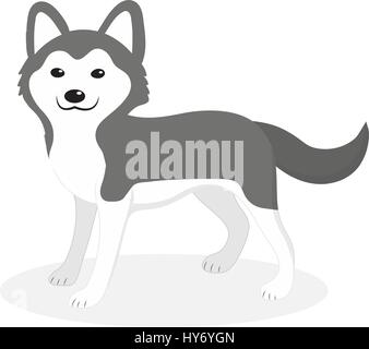 Husky breed dog icon, flat, cartoon style. Cute puppy isolated on white background. Vector illustration, clip-art. - Stock Photo