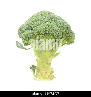 Raw green broccoli isolated on white background - Stock Photo