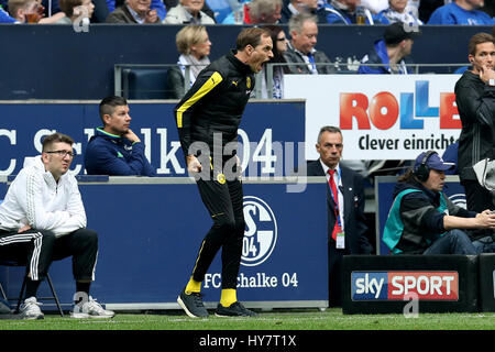 Gelsenkirchen. 1st Apr, 2017. Coach Thomas Tuchel (C) of Borussia Dortmund reacts during the German Bundesliga soccer - Stock Photo