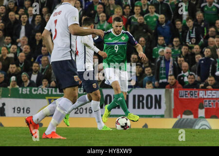 National Football Stadium at Windsor Park, Belfast. 26th March 2017. 2018 World Cup Qualifier - Northern Ireland - Stock Photo