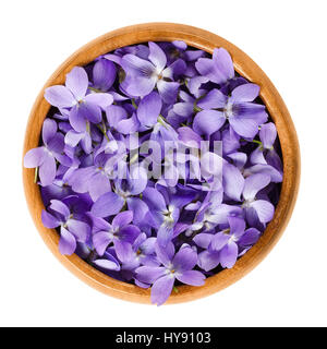 Wild violet flowers in wooden bowl. Also wood, sweet, English, common or garden violet. Viola odorata. Edible blossoms, - Stock Photo