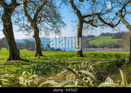 A view over the carrick roads on the river fal in cornwall, england, uk - Stock Photo