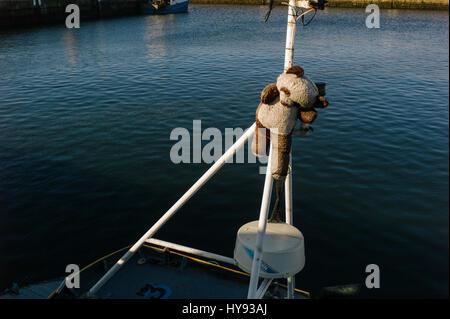 Mascot fastened to mast on Scottish Fishing Trawler in Buckie Harbour. - Stock Photo