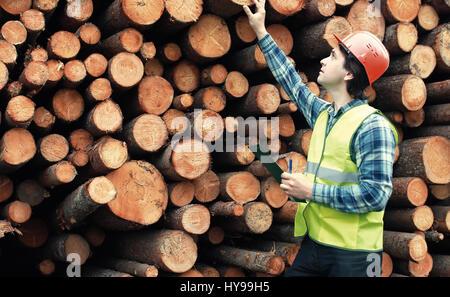 Worker in helmet counts wood lumber - Stock Photo