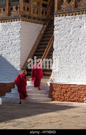 Two monks climb the steep stairs up to the Buddhist temple in the Punakha Dzong, Punakha, Bhutan. - Stock Photo