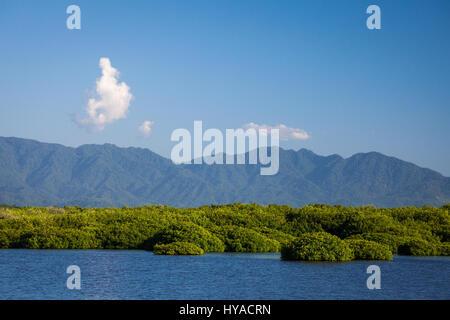 Mangroves and mountains near San Blas, Nayarit, Mexico. - Stock Photo
