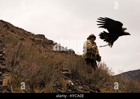 eagle hunters at golden eagle festival, bayan, olgii, mongolia - Stock Photo